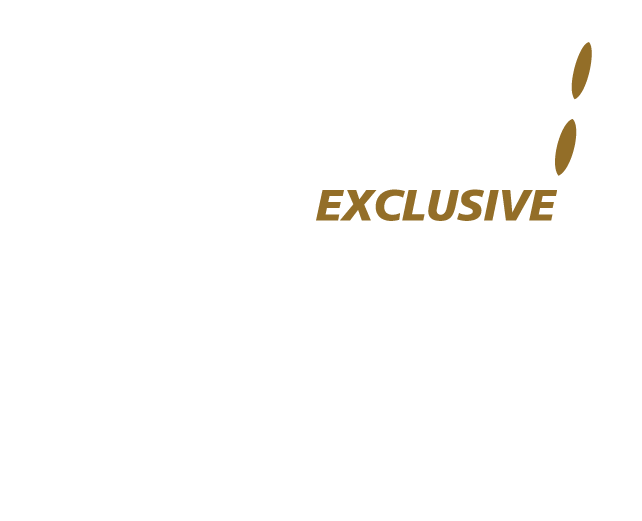 NAP Exclusive Logo