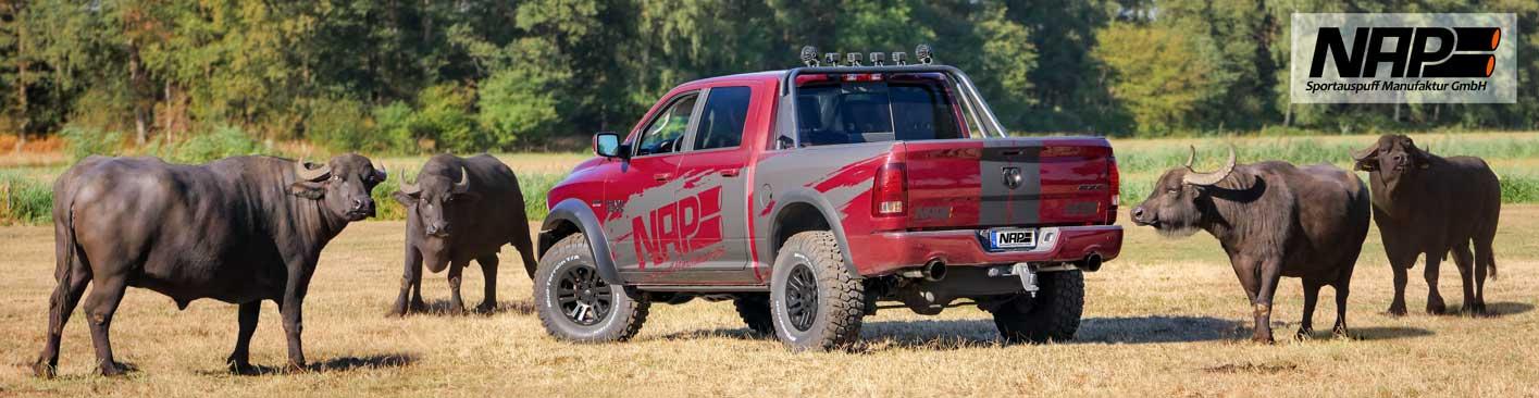 NAP-Sportauspuff-RAM-1500-buffalo1_web
