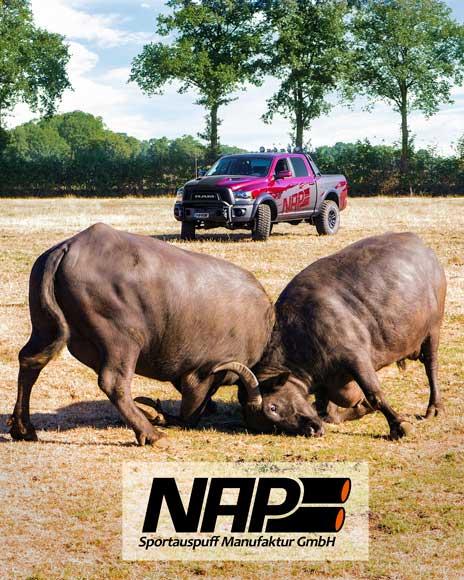 NAP-Sportauspuff-RAM-1500-buffalo2_web